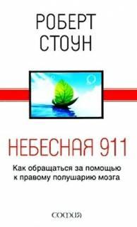 Роберт Стоун - Небесная 911